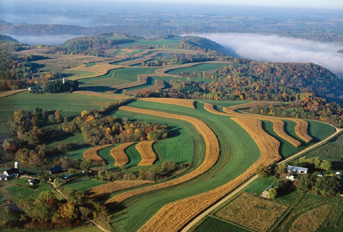 paysage agri